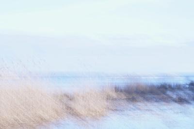 https://imgc.artprintimages.com/img/print/sunlight-serenade_u-l-q1gvw4s0.jpg?p=0