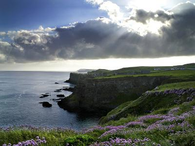 Sunlight Streams Through Clouds onto Sea Pinks at Dunluce Castle on Northern Ireland's North Coast-Chris Hill-Photographic Print