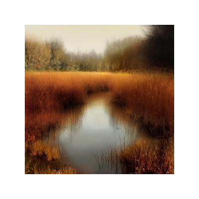 Sunlit Pond II-Madeline Clark-Giclee Print
