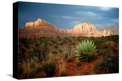 Sunlit Rocks-Elizabeth St^ Hilaire Nelson-Stretched Canvas Print