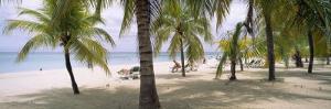 Sunning Tourists on 7-Mile Beach, Negril, Jamaica