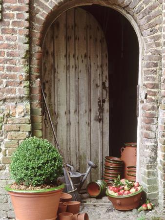 Buxus in Terracotta Pot, Apples in a Bowl, Empty Pots Outside Wo Oden Barn Door