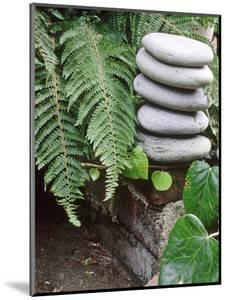 Natural Sculpture by Sunniva Harte