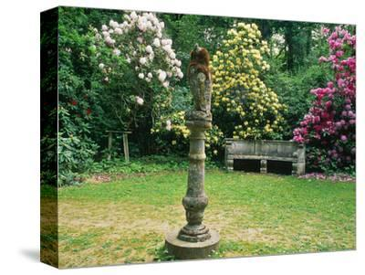 """Rhododendron """"Pink Pearl,"""" Rhododendron """"Milkmaid,"""" Owl House, Kent"""
