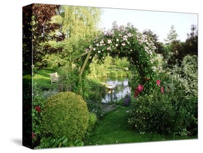 """View of Pond Through Timber Arch Covered with Rosa """"Francis E. Lester"""" New Barn"""
