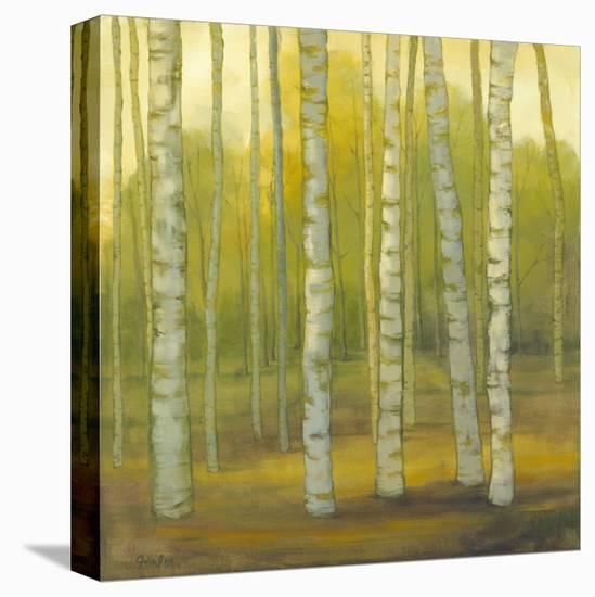 Sunny Birch Grove--Stretched Canvas Print