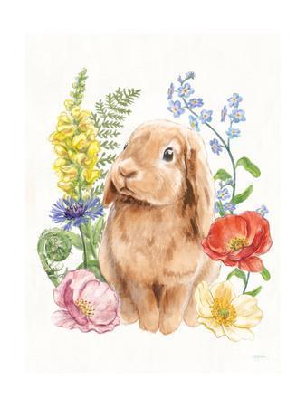 https://imgc.artprintimages.com/img/print/sunny-bunny-i_u-l-q1b1q1s0.jpg?p=0