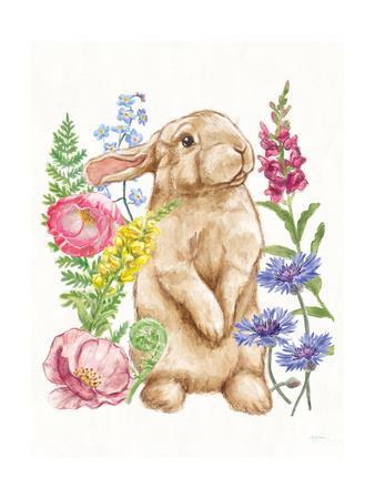 https://imgc.artprintimages.com/img/print/sunny-bunny-iii_u-l-q1b1pol0.jpg?p=0