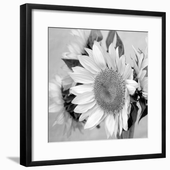 Sunny Sunflower II-Nicole Katano-Framed Photo