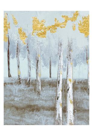 Birch Glint 1