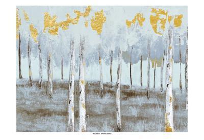 Birch Gray Day 1