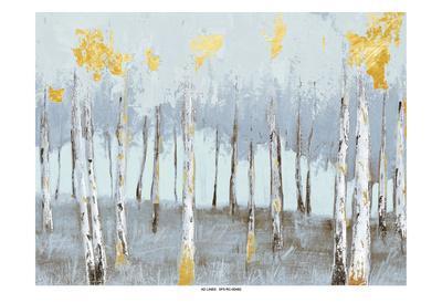 Birch Gray Day 2