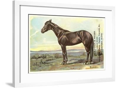 Sunol, Race Horse--Framed Art Print
