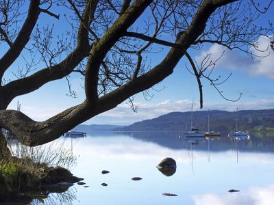 https://imgc.artprintimages.com/img/print/sunrise-ambleside-lake-windermere-lake-district-national-park-cumbria-england-uk-europe_u-l-phcufe0.jpg?p=0