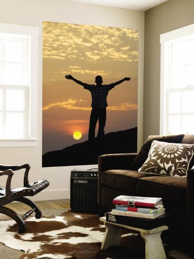 Sunrise and Silhouette of Horse and Rider on the Giza Plateau, Cairo, Egypt-Darrell Gulin-Wall Mural