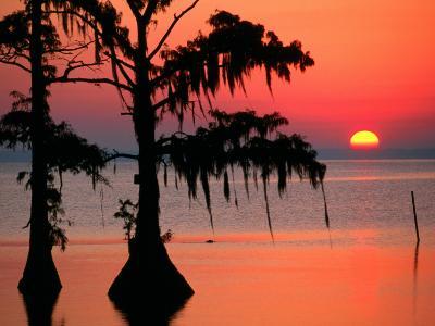 Sunrise at Lake Palourde with Spanish Moss Trees in Silhouette-John Elk III-Photographic Print