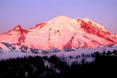 Sunrise at Mount Rainier-Douglas Taylor-Photographic Print