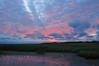 Sunrise at the Payne's Creek Intertidal Zone-Darlyne A^ Murawski-Photographic Print