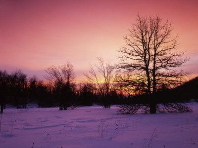 Sunrise at Thorton Gap, Shenandoah National Park, Virginia, USA-Charles Gurche-Photographic Print