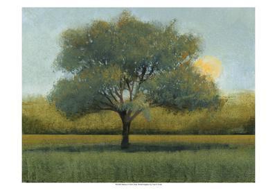 https://imgc.artprintimages.com/img/print/sunrise-i_u-l-f5q42y0.jpg?p=0