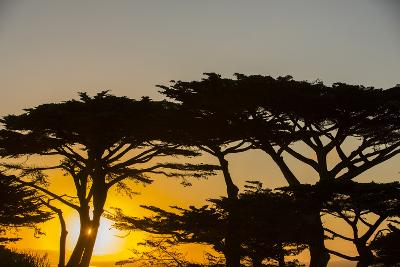 Sunrise in Monterey Bay, California-John Burcham-Photographic Print