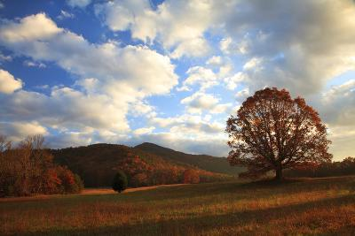 Sunrise in the Fall, Cades Cove, Smoky Mountains NP, Tennessee, USA-Joanne Wells-Photographic Print
