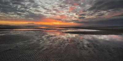 Sunrise in the Mudflat, Close to List (Municipality), Sylt (Island), Schleswig-Holstein, Germany-Rainer Mirau-Photographic Print
