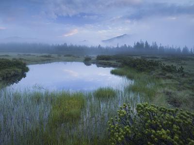 https://imgc.artprintimages.com/img/print/sunrise-in-the-nature-reserve-siebenmshser-kitzb-hel-alps-moor-hochkrimml-gerlosplatte_u-l-q11z0e10.jpg?p=0