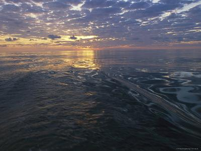 Sunrise is Reflected on the Wake of a Boat-Nick Caloyianis-Photographic Print