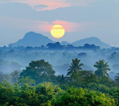 sunrise-jungles-of-sri-lanka
