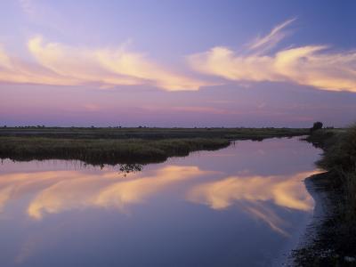 Sunrise, Merritt Island National Wildlife Refuge, Florida, USA-Adam Jones-Photographic Print