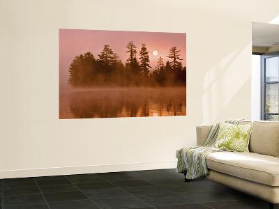 Sunrise on a Lake, Adirondack Park, New York, USA-Jay O'brien-Wall Mural