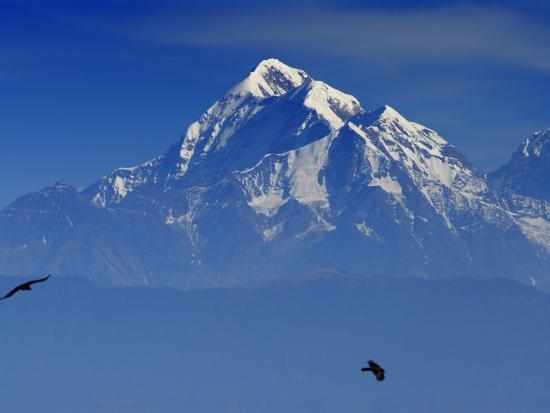 Sunrise on Nanda Devi Peak in Indian Himalayas-Michael Gebicki-Photographic Print