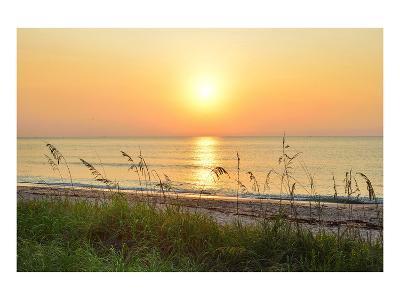 Sunrise on the Beach, Palm Beach, Florida, USA--Art Print