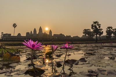 https://imgc.artprintimages.com/img/print/sunrise-over-the-west-entrance-to-angkor-wat-angkor-siem-reap-cambodia_u-l-pxxxc00.jpg?p=0
