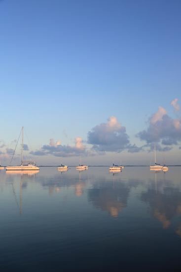Sunrise Sails-Brent Anderson-Photographic Print
