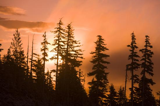 Sunrise scenic views near Timberline lodge, Lolo Pass, Mt. Hood Wilderness Area, Oregon, USA-Stuart Westmorland-Photographic Print