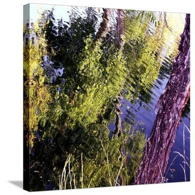 Sunrise Spring-Suzanne Silk-Stretched Canvas Print