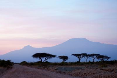 Sunrise View of Mount Kilimanjaro behind a Line of Acacia Trees. Amboseli National Park, Kenya-Cultura Travel/Philip Lee Harvey-Photographic Print