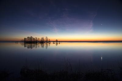 Sunrise with Light Pink Cloud and Planet over Lake Mattamuskeet and a Stand of Bald Cypress Trees-Robbie George-Photographic Print
