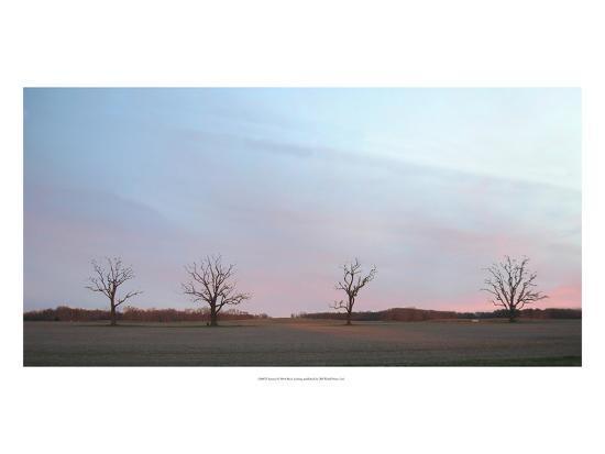 Sunrise-Alicia Ludwig-Art Print