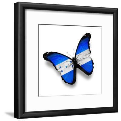 Honduras Flag Butterfly, Isolated On White