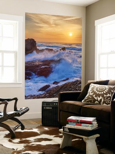 Sunscape Splash at Montaña de Oro State Park-Vincent James-Wall Mural