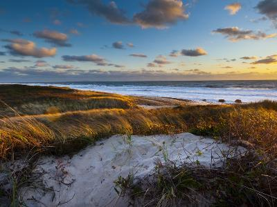 Sunset Along Moshup Beach, Martha's Vineyard with View of Ocean and Grass Blowing During Late Fall-James Shive-Photographic Print