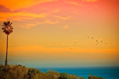 Sunset and Birds-Lantern Press-Wall Mural