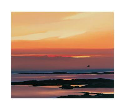 Sunset And Flight-Pam Carter-Collectable Print