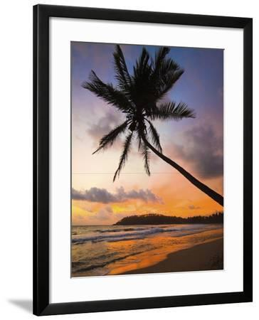 Sunset and Palm Tree and the Western Point of the South Coast Surf Beach at Mirissa, Near Matara, S-Robert Francis-Framed Photographic Print