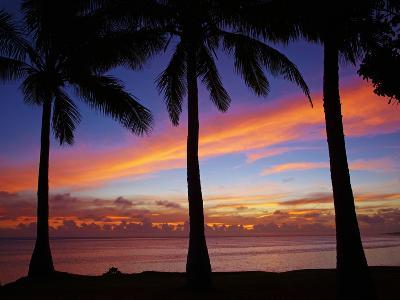 Sunset and Palm Trees, Coral Coast, Viti Levu, Fiji, South Pacific-David Wall-Photographic Print