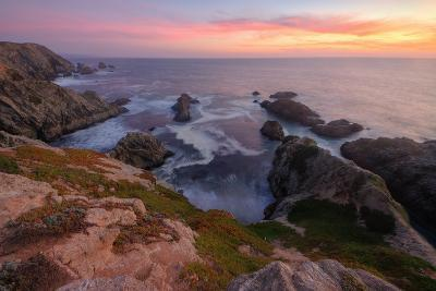 Sunset at Bodega Head-Vincent James-Photographic Print