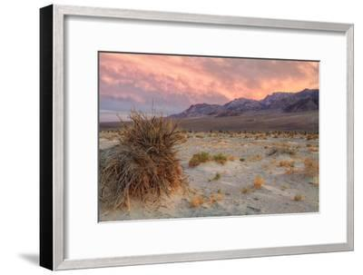 Sunset at Devil's Cornfield-Vincent James-Framed Photographic Print